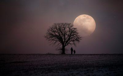 Self Nurture for Winter Wellbeing Resource