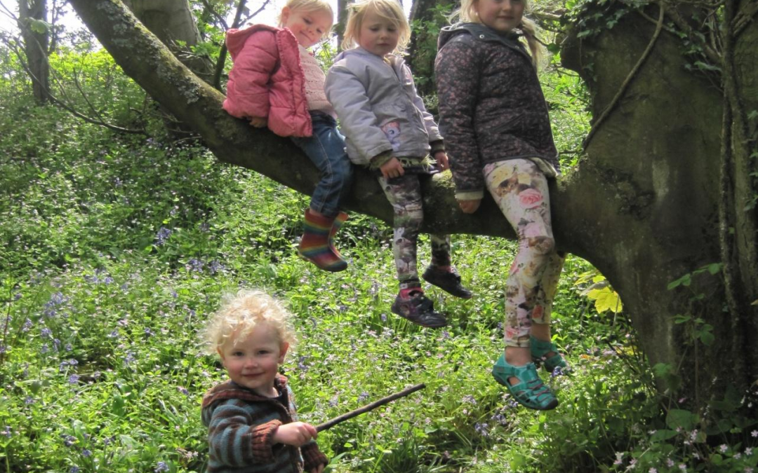 Introducing Forest School Everyday